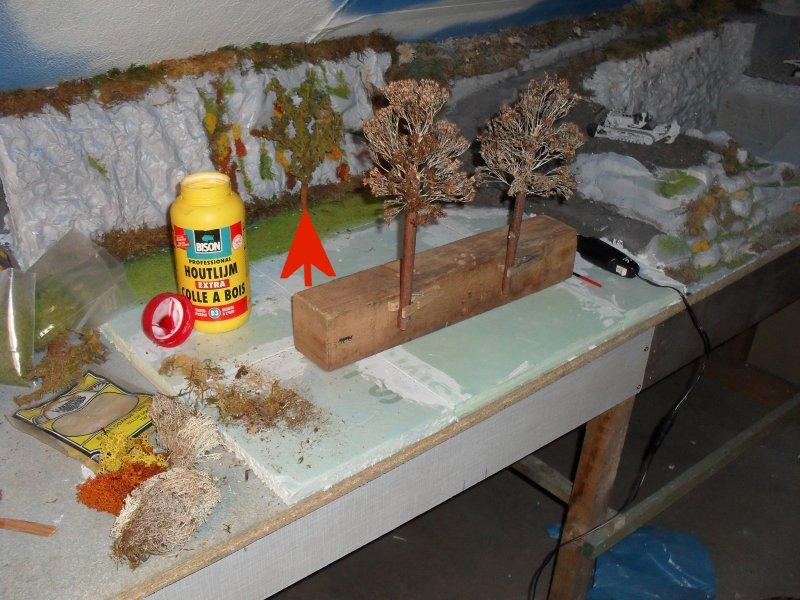 L'implantation des branches de SEDUM comment réalisé un arbre